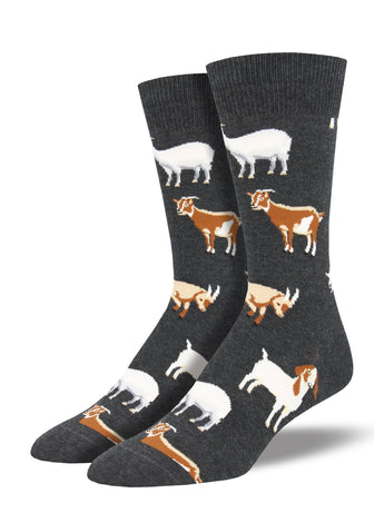 Men's Silly Billy Socks - Charcoal