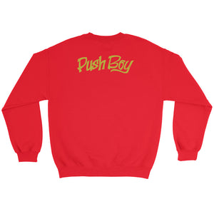 Push Boy Sweatshirt (Back Print)