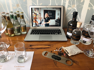 Hotham's Virtual Gin School