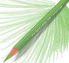 Prismacolor Coloured Pencil - Single Apple Green Art Materials