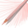 Prismacolor Coloured Pencil - Single Blush Pink Art Materials
