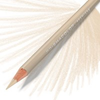 Prismacolor Coloured Pencil - Single Ginger Root Art Materials