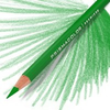 Prismacolor Coloured Pencil - Single Grass Green Art Materials