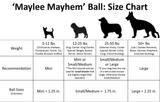 Maylee Mayhem Ball - Mini - wooney, dog, toys, cheap, tough, durable, strong, new, fun, colorful, free, inexpensive, low cost,