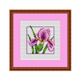 Iris Cross Stitch Pattern.