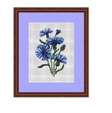 Cornflower Counted Cross Stitch Pattern.
