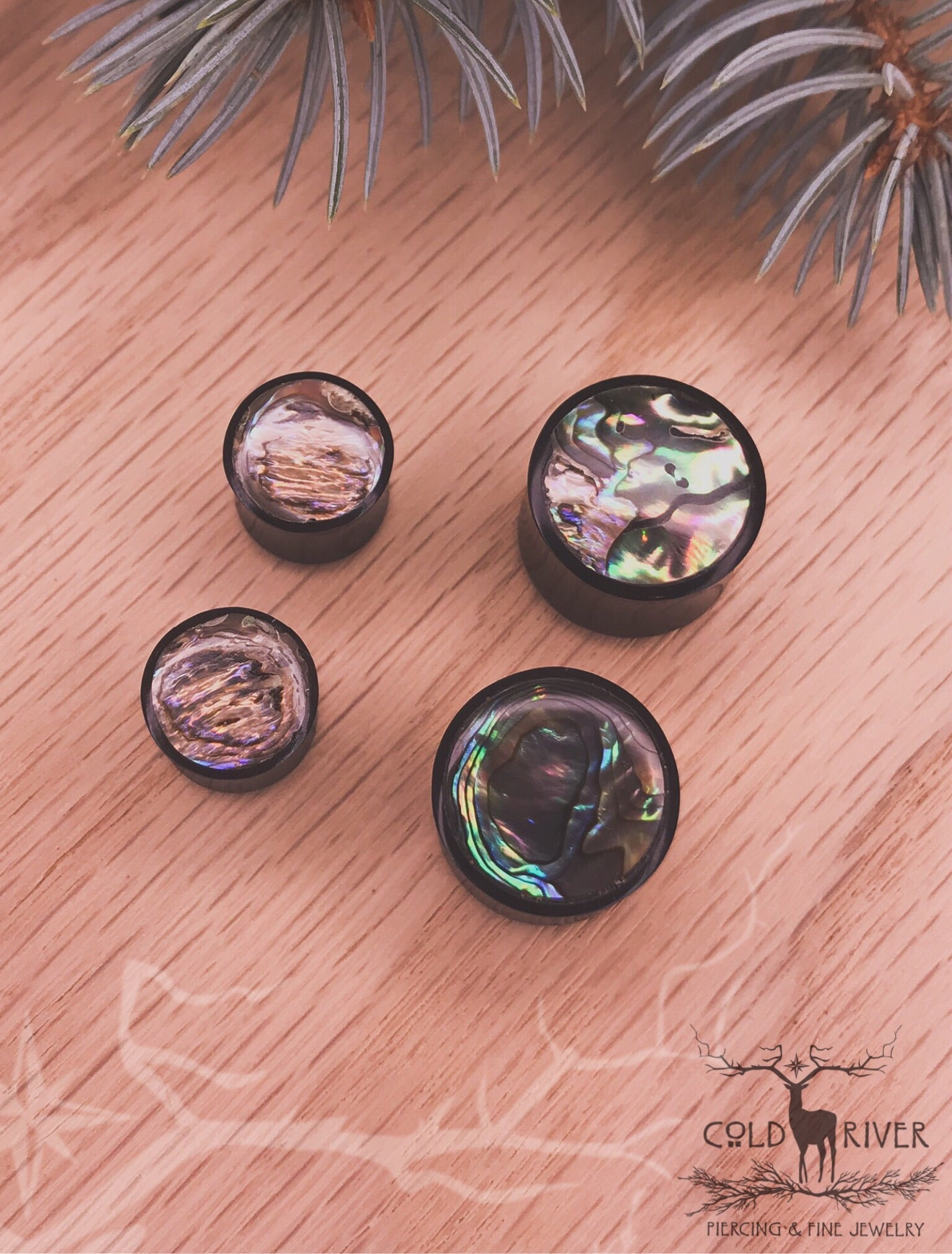 "3/4"" Horn and Abalone Plug"