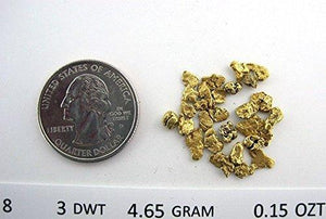 Alaskan Yukon Gold Rush Nuggets #8 Mesh .15 Troy Oz 4.65 Grams Or 3 Dwt Bc Flake