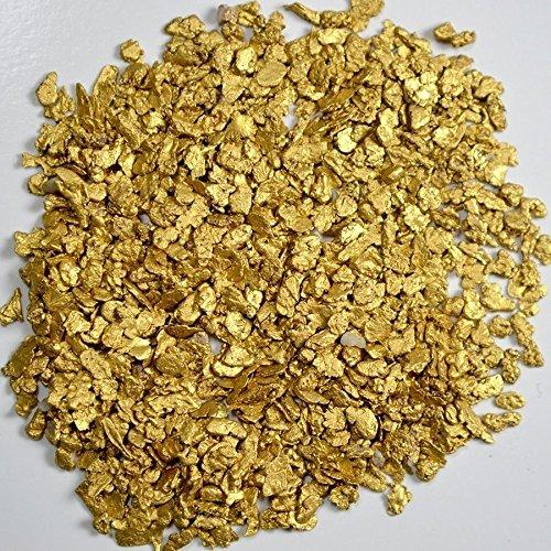 Alaskan Yukon Gold Rush Nuggets 12-10 Mesh 1 Gram of Fines