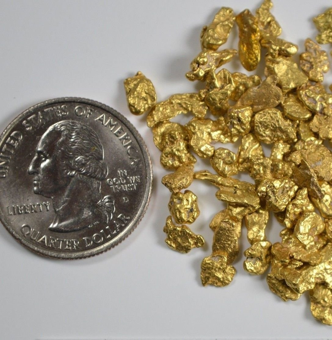 Alaskan Yukon Bc Gold Rush Nuggets #6 Mesh 10 Grams Of Clean Gold Flakes Flake