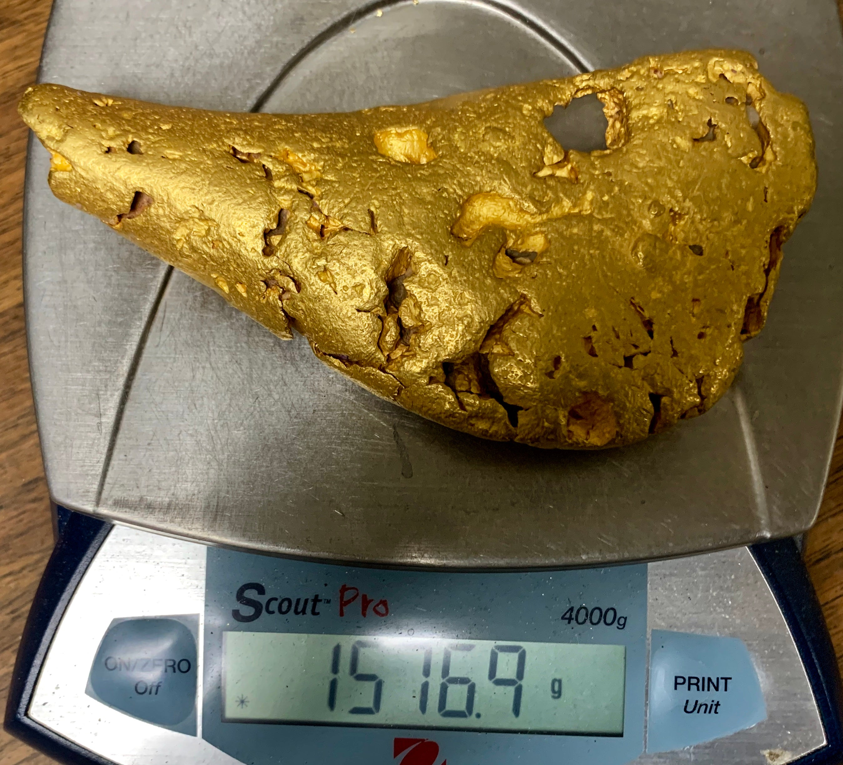 Large Natural Gold Nugget Australian 1,576.9 Grams 50.7 Troy Ounces Very Rare