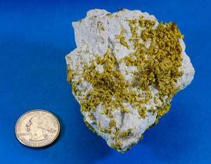 Large Gold Bearing Quartz Specimen Sierra Mining District California 298.37 Grams 9.59 OZ Genuine