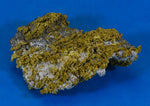 Large Gold Bearing Quartz Specimen Sierra Mining District California 113.10 Grams3.63 OZ Genuine