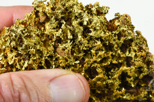 "QN-14 ""Alaskan BC Gold Nuggets with Quartz"" - Genuine - 8.22 Grams"