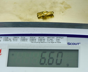 #512 Alaskan BC Natural Gold Nugget 17.14 Grams Genuine
