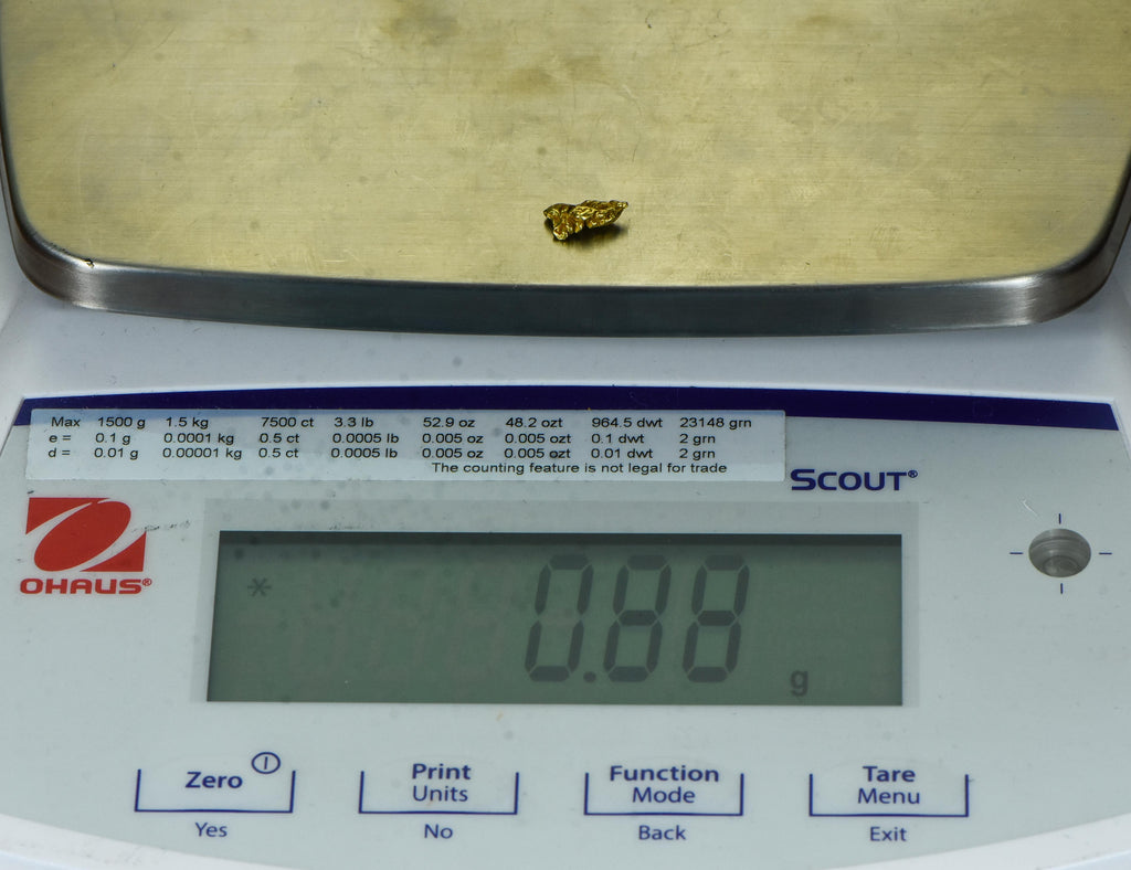 #880 Australian Natural Gold Nugget .98 Grams Genuine