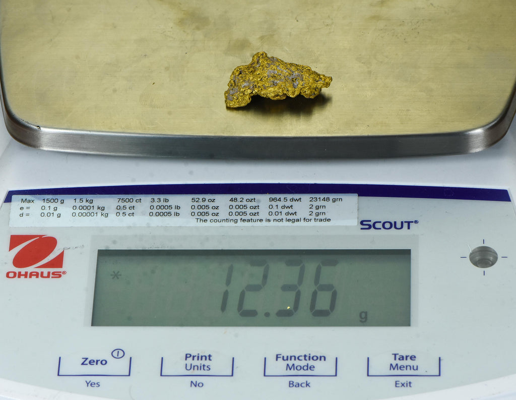 #299 Alaskan BC Natural Gold Nugget 2.82 Grams Genuine