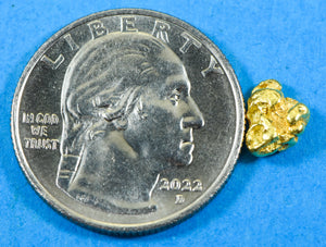 Seiko Gold Nugget Inlayed Solar Watch by Orocal