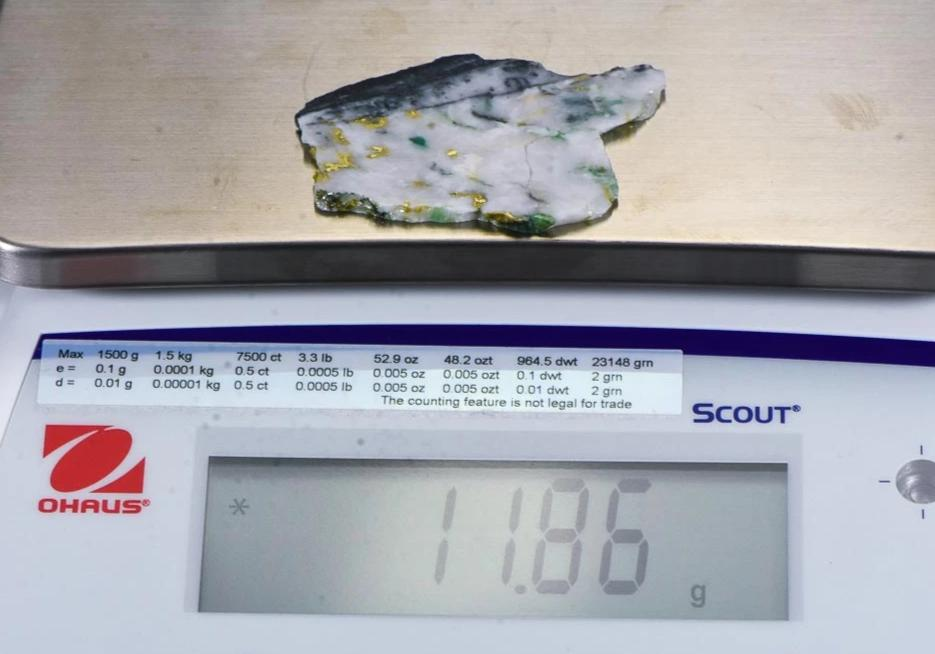 "Large Gold Bearing Quartz Slab Original 16-1 Mine California 11.86 Grams Genuine ""BlueJay"""