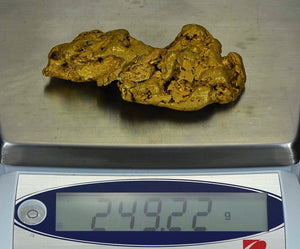 Large Alaskan Natural Gold Nugget 249.22 Grams Genuine 8.01 Troy Ounces 98.46% Pure