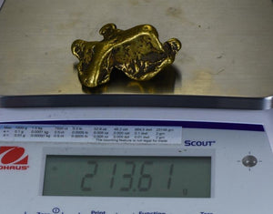 Large Alaskan BC Natural Gold Nugget 213.61 Grams Genuine 6.86 Troy Ounces