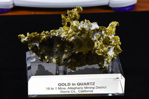 Hand Etched Gold Bearing Quartz Specimen Original 16-1 Mine California 492.24 Grams 14.02 OZ Genuine