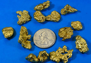 Alaskan Gold Rush Nuggets