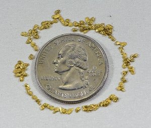 California Gold Nuggets 1 Grams of #18 Mesh Gold Authentic Natural American River