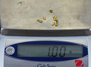 California Gold Nuggets 1 Grams of #8 Mesh Gold Authentic Natural River Flakes