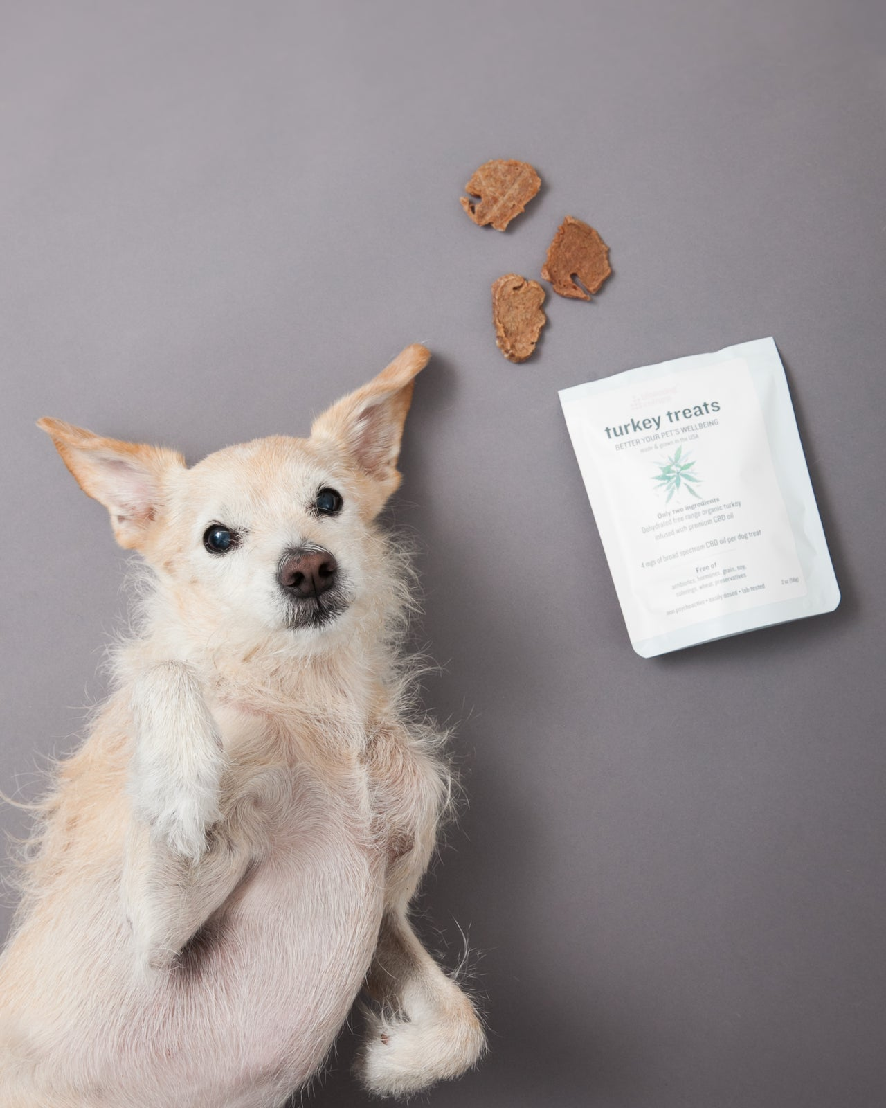 Dehydrated turkey treats for dogs infused with CBD oil | Blooming Culture