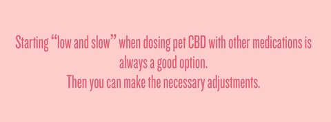 Pet Medication and CBD