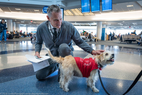Vinny the terrier, a PUP program volunteer at LAX.
