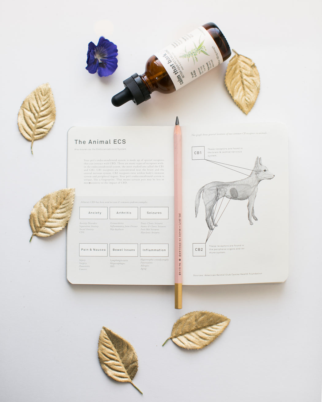 Keep track of pet CBD regimen with The Pet Jotter | Blooming Culture