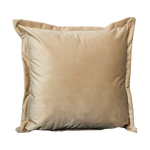 Beige Velvet Cushion