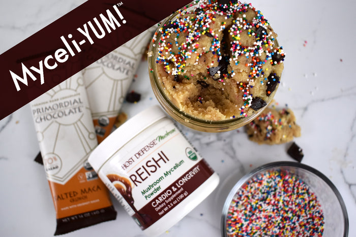 Reishi & Primordial Chocolate™ No-Bake Cookie Dough