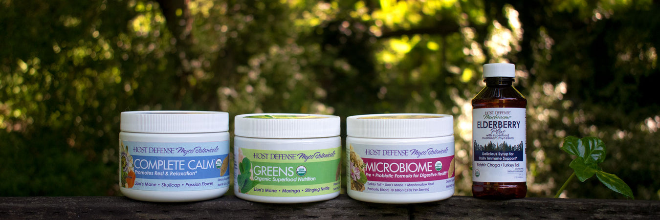 3 new MycoBotanicals® Powders and Elderberry Plus Syrup