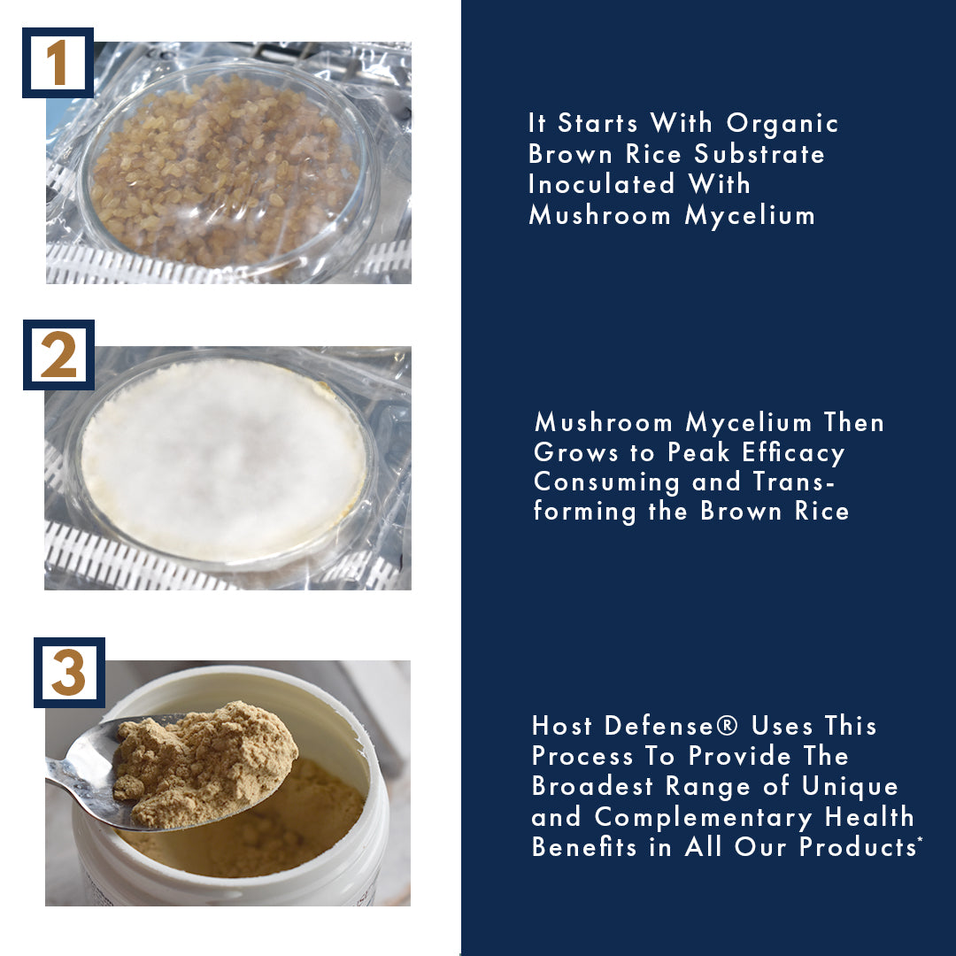 It Starts With Organic Brown Rice  Substrate Inoculated With Mushroom  Mycelium  Mushroom Mycelium Then Grows  to Peak Efficacy Consuming and  Transforming the Brown Rice  Host Defense® Uses This Process  To Provide The Broadest Range of  Unique and Complementary  Health Benefits in All Our Products