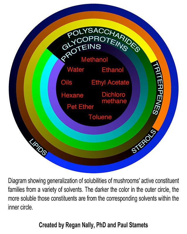 Diagram showing generalization of solubilities of mushrooms' active constituent families from a variety of solvents. The darker the color in the outer circle, the more soluble those constituents are from the corresponding solvents within the inner circle.