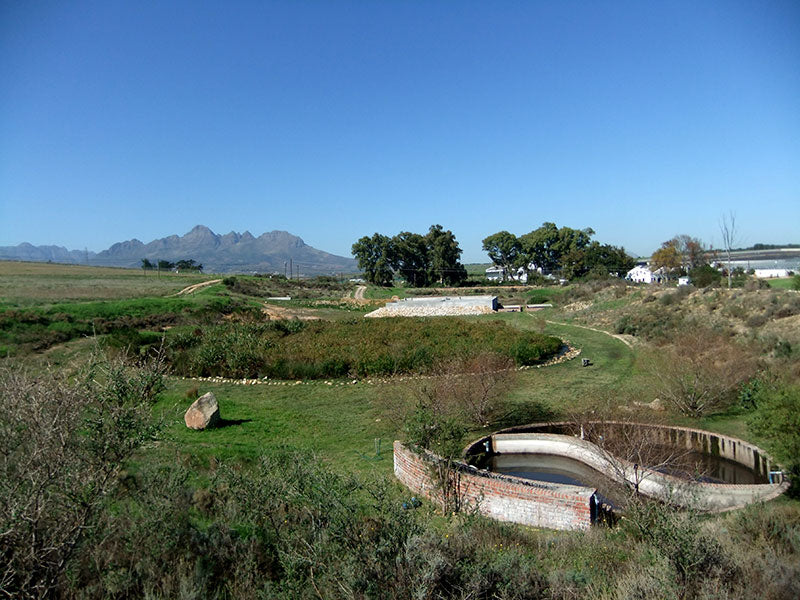Spier Winery, Cape Town, South Africa