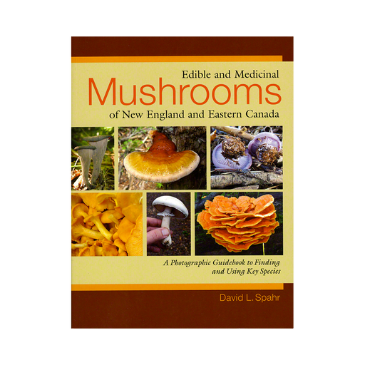 Edible and Medicinal Mushrooms of New England and Eastern Canada