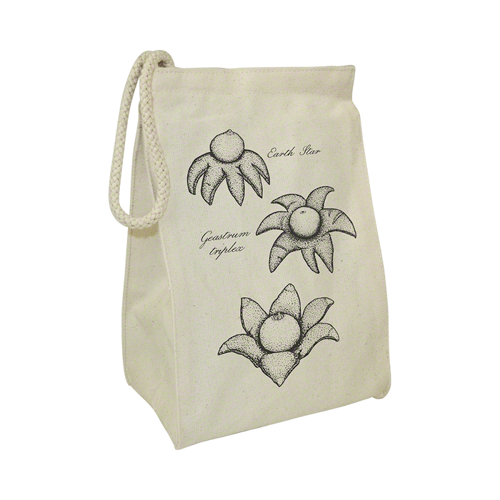 Earth Star Reusable Lunch Bag