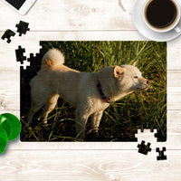 Create your own puzzle with YOUR Shiba!