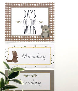 Australian Classroom Decor Theme Download Days of the week in classroom