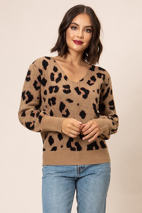 Can't Be Tamed Leopard V-Neck Sweater