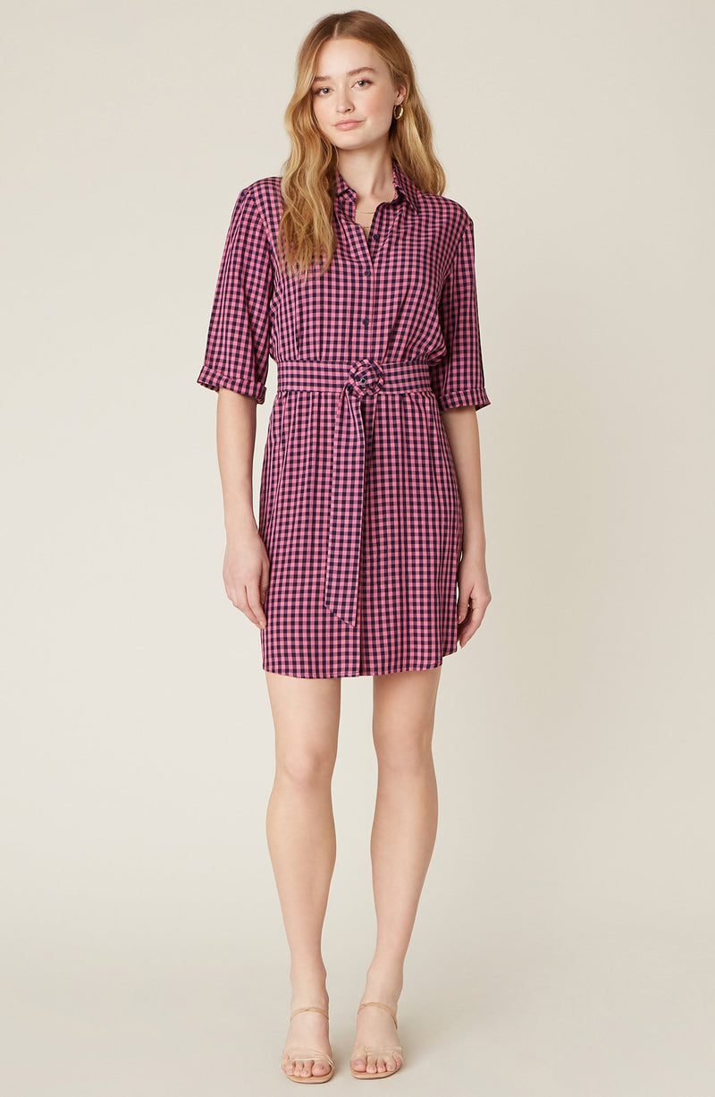 Checks Every Box Gingham Dress by BB Dakota
