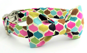 multicoloured patterned dog collar and lead with metal fittings