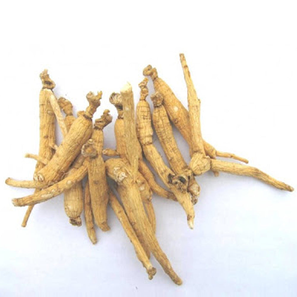 The effects of ginseng on the skin for anti-aging- Ginseng Skincare