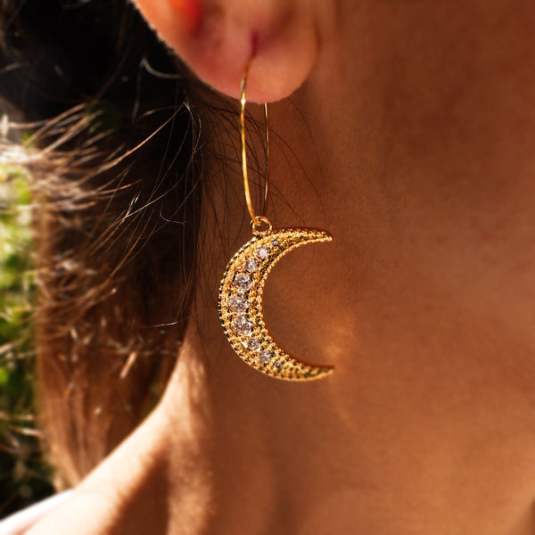 Half Shiny Moon Earrings