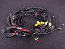 Terminated engine harness - GM LS GEN III/IV including MaxxECU RACE kit