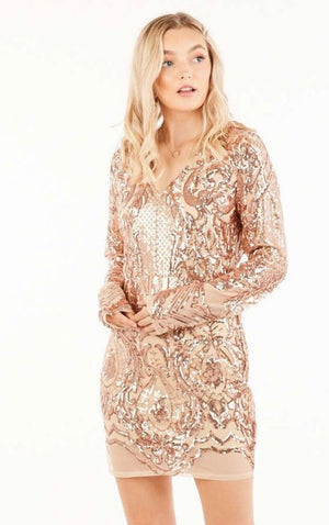 Sequin Long Sleeve Fitted Dress